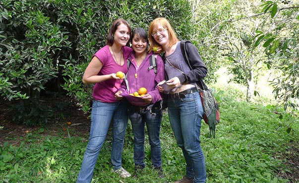 Three young persons holding oranges smile at the camera.